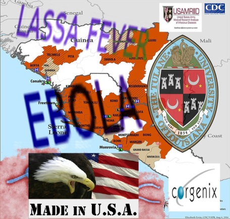 EBOLA made in EEUU4