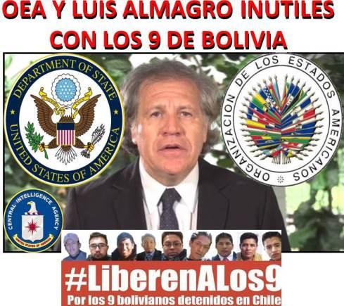 OEA Y LUIS ALMAGRO INUTILES CON LOS 9 DE BOLIVIA